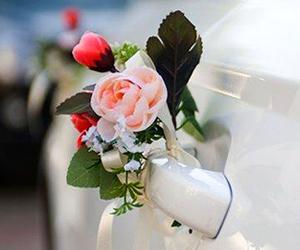 украшение свадебных машин и залов
